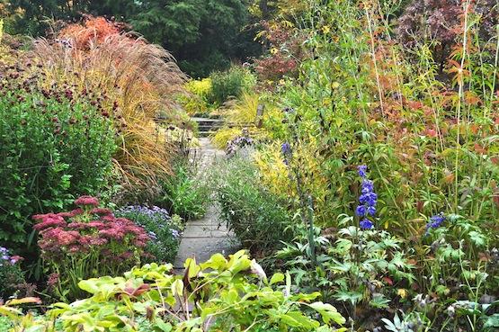artenblog | Wild Gardening | Potsdam Förster Garten | Garten Blog über einen Garten in der Heide