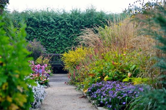 artenblog | Wild Gardening | Karl Förster Garten | Garten Blog über einen Garten in der Heide