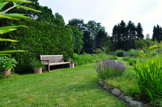 Gartenblog | Wild Gardening | Juni 2014 | Garten Blog über einen Garten in der Heide