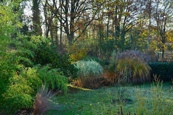 Gartenblog | Wild Gardening | November 2014 | Garten Blog über einen Garten in der Heide