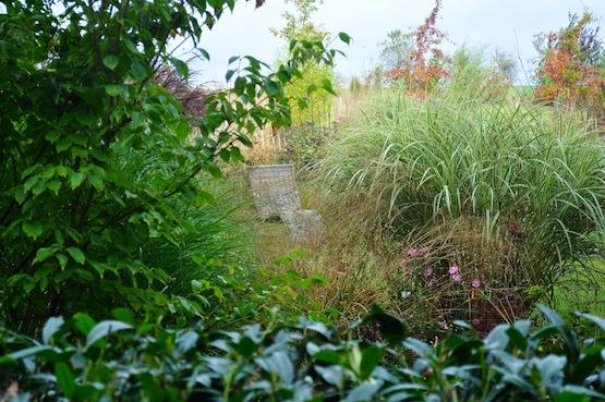 Gartenblog | Wild Gardening | Oktober 2014 | Garten Blog über einen Garten in der Heide
