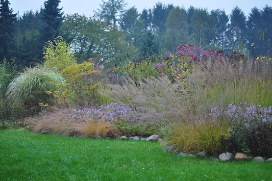 Wild Gardening | Ein Garten in der Heide | Gartenblog | Staudenbeet
