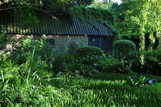 Wild GArdening | Gartenblog | Nov 17 | Priona Teich