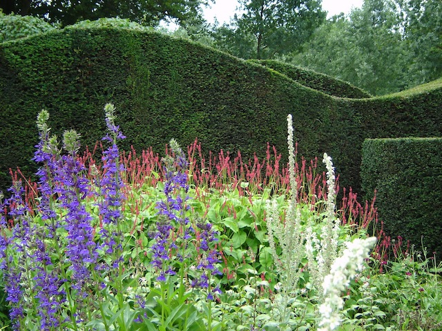 Wild Gardening | Gartenblog | Nov 17 | Hummelo Heckenwelle