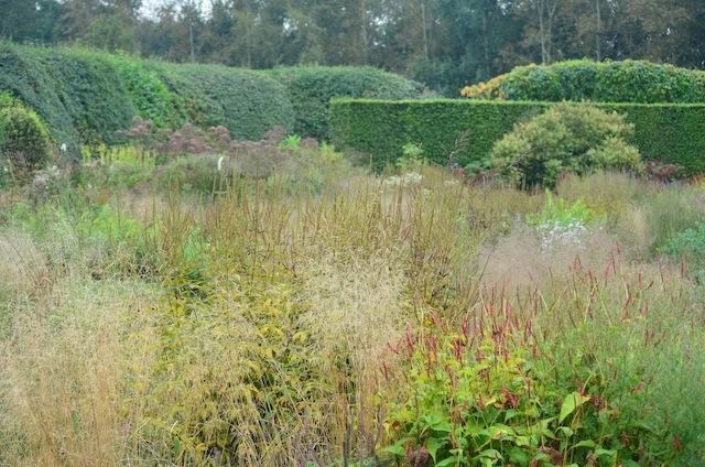 Wild Gardening | Gartenblog | Nov 17 | Hummelo