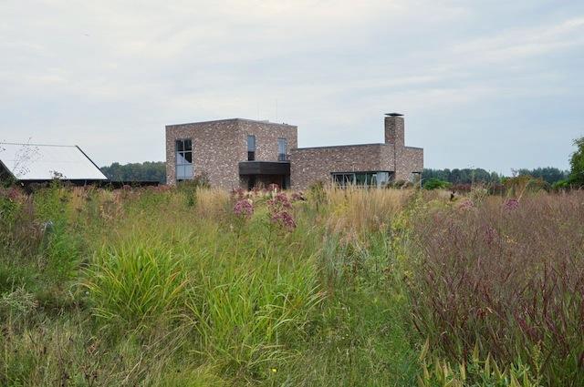 Wild Gardening | Gartenblog | Nov 17 | Oudolf Atelier