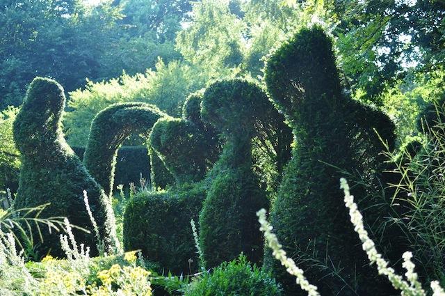 Wild Gardening | Gartenblog | Nov 17 | Priona